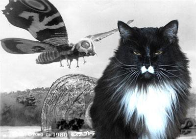 Mothra/Thelma
