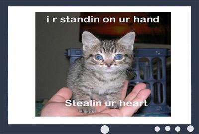 LOL Cat Screen